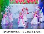andong   south korea   oct 01   ... | Shutterstock . vector #1255161706
