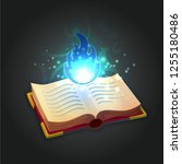 ancient wizard's open book with ...