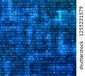 binary computer code. digital...   Shutterstock . vector #1255231579