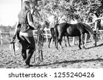 girl with equestrian equipment. ... | Shutterstock . vector #1255240426