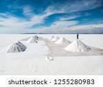 salt worker in sunshine scenery ... | Shutterstock . vector #1255280983
