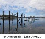 remains of a dock near first... | Shutterstock . vector #1255299520