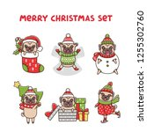 merry christmas set dogs breed... | Shutterstock .eps vector #1255302760