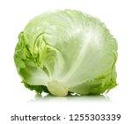 green iceberg lettuce isolated... | Shutterstock . vector #1255303339
