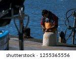 a fishermen cutting some raw... | Shutterstock . vector #1255365556