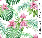 pink orchids and tropical... | Shutterstock . vector #1255378159