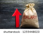 a bag with money and the... | Shutterstock . vector #1255448023