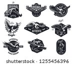 Set Of Vector Birds. Eagles An...