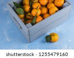 fresh tangerines in box with...   Shutterstock . vector #1255479160