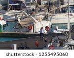 italy  sicily  mediterranean... | Shutterstock . vector #1255495060