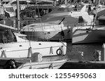 italy  sicily  mediterranean... | Shutterstock . vector #1255495063