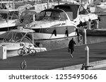 italy  sicily  mediterranean... | Shutterstock . vector #1255495066