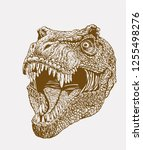vintage tyrannosaurus   retro... | Shutterstock .eps vector #1255498276