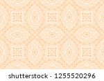 abstract hand drawn doodle... | Shutterstock .eps vector #1255520296