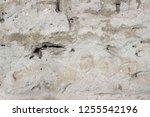 plaster wall texture... | Shutterstock . vector #1255542196