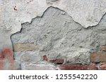 plaster wall texture... | Shutterstock . vector #1255542220