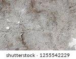 plaster wall texture... | Shutterstock . vector #1255542229
