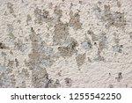 plaster wall texture... | Shutterstock . vector #1255542250