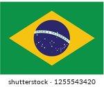 illustration of flag vector... | Shutterstock .eps vector #1255543420