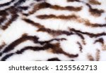 texture  fur  figure. painted... | Shutterstock . vector #1255562713