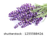 Bouquet Of Lavender  On A Whit...