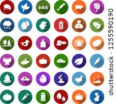 color back flat icon set   leaf ... | Shutterstock .eps vector #1255590190
