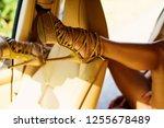 womans heels. close up of woman ...   Shutterstock . vector #1255678489