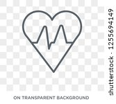 cardiogram icon. trendy flat... | Shutterstock .eps vector #1255694149