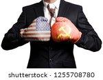 businessman in boxing gloves... | Shutterstock . vector #1255708780