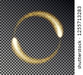 gold sparkle circle vector.... | Shutterstock .eps vector #1255713283