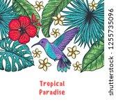 tropical design template.... | Shutterstock .eps vector #1255735096