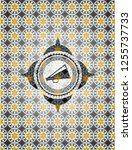 megaphone icon inside arabesque ... | Shutterstock .eps vector #1255737733