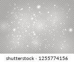 dust white. white sparks and... | Shutterstock .eps vector #1255774156