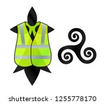 breton symbols hermine and... | Shutterstock .eps vector #1255778170