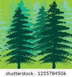 acrylic painted evergreen tree... | Shutterstock .eps vector #1255784506