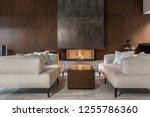 fancy modern room with a...   Shutterstock . vector #1255786360