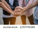 young women cooperate. | Shutterstock . vector #1255796380