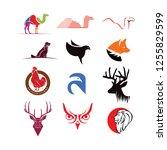 animal logo symbol pack | Shutterstock .eps vector #1255829599