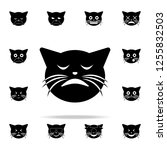 triumph cat icon. cat smile... | Shutterstock .eps vector #1255832503