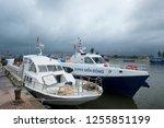 sa ky  vietnam   2018  the high ... | Shutterstock . vector #1255851199