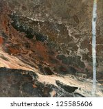 natural picture on surface of... | Shutterstock . vector #125585606