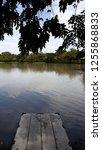 small dock under the tree look... | Shutterstock . vector #1255868833