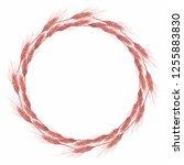 wheat wreath illustration  | Shutterstock . vector #1255883830