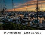 san pedro  california  ... | Shutterstock . vector #1255887013