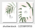 botanical invitation card... | Shutterstock .eps vector #1255895953