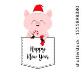 happy new year. pig face head... | Shutterstock .eps vector #1255898380