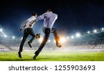 playing team games. mixed media | Shutterstock . vector #1255903693