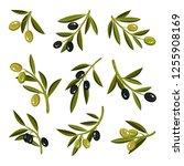 flat vector set of small sprigs ... | Shutterstock .eps vector #1255908169