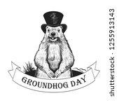 Groundhog Day. Groundhog...
