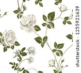 trendy floral background with... | Shutterstock .eps vector #1255921639